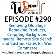 It's Episode 290 and we've got plugins for Removing Old Slugs, Removing Products, Cropping Background Images, Remote Site Search, and Custom States for Woo Commerce. It's all coming up on WordPress Plugins A-Z!